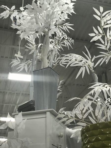 athome-white-tree