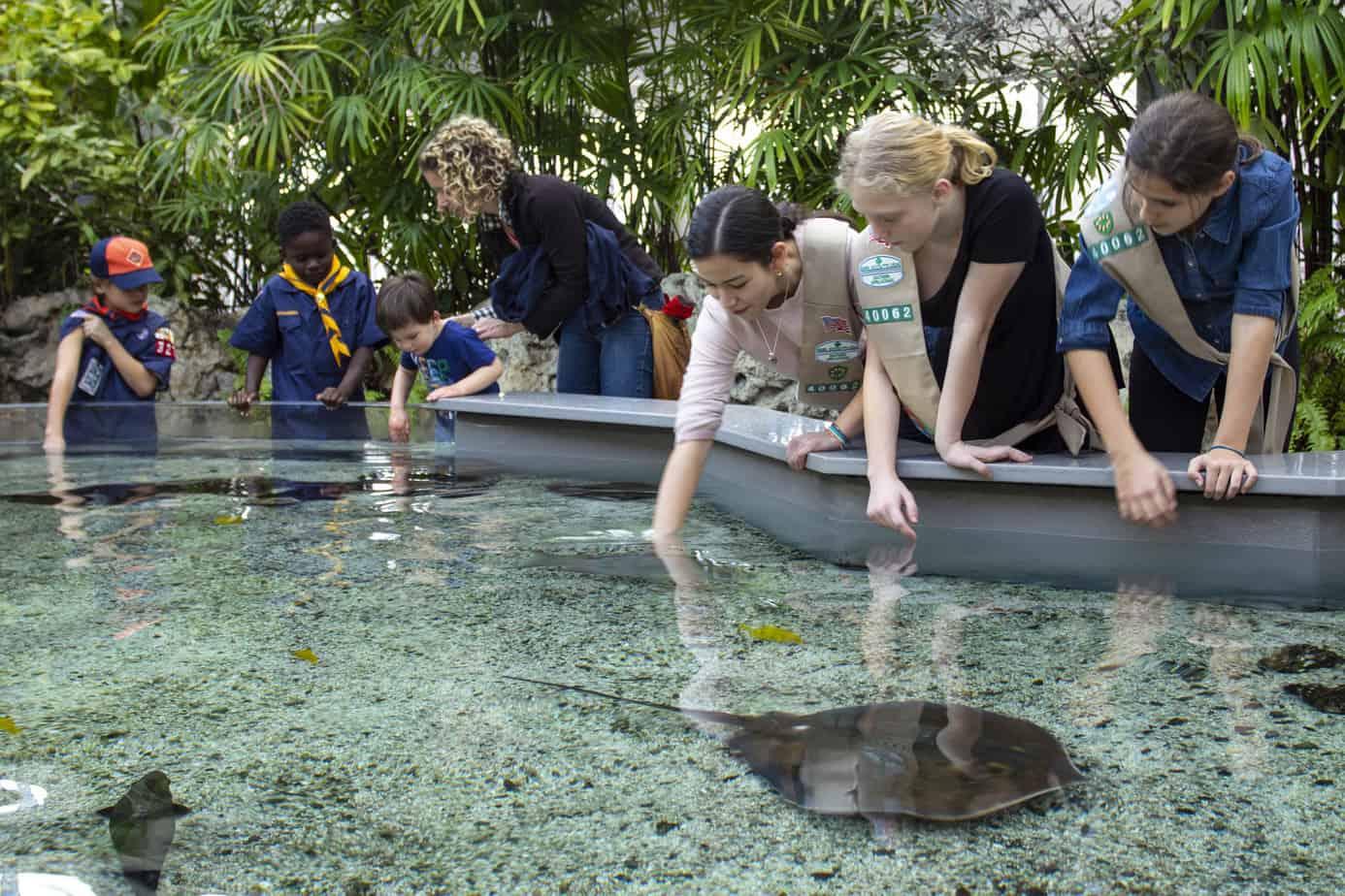 Half Price Tennessee Aquarium Tickets in September | Sami ...